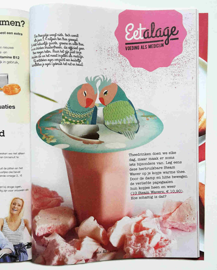 Lekker Gezond; Dutch health Magazine 02-2017