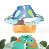 Songbirds giftbox